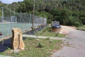 Haie terrain de tennis